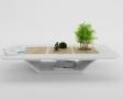 decor-cu-bonsai3