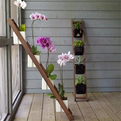 suporturi flori