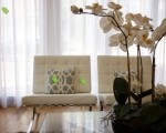 Reflectati caracteristicile naturii in designul interior